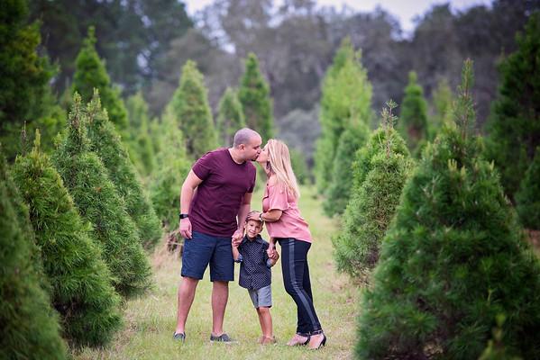 Tree Farm Nov 2020 - Binato