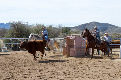 2017-Sunday Roping-0014