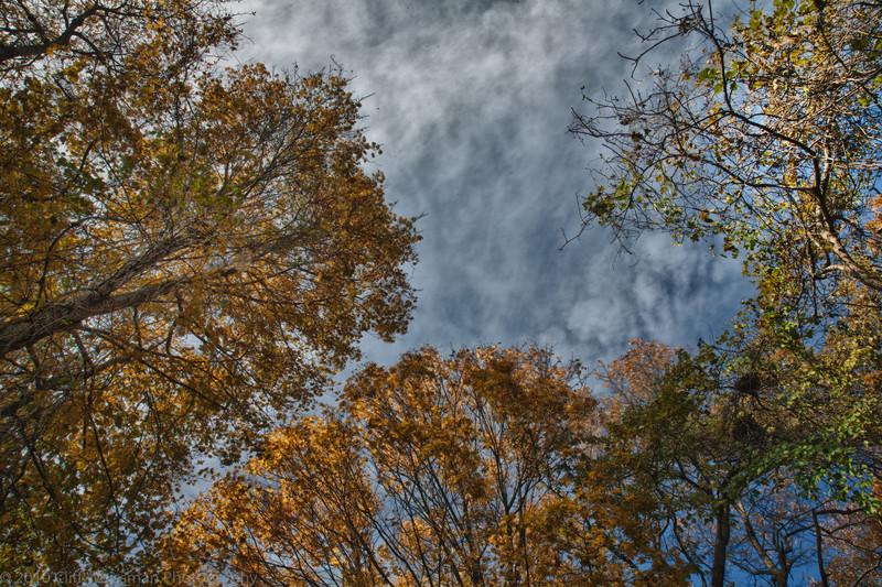 Trailside Park-7317_HDR2.jpg