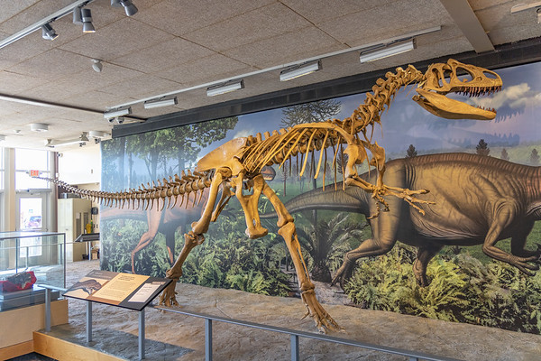 Dinosaur Monument