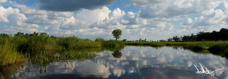 Botswana LandscapeS-5.jpg