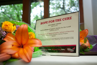Komen Hope for a Cure 2013