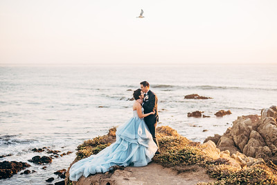 Steph and Dan's Wedding