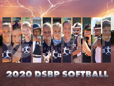 2020 DSBP Softball - Dark Blue