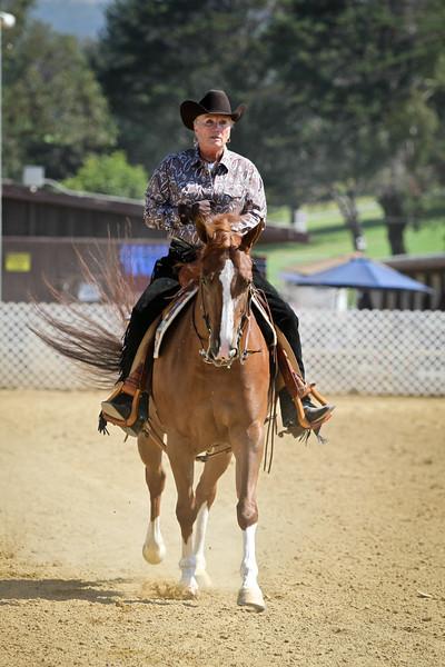 Pre Show Horsemanship