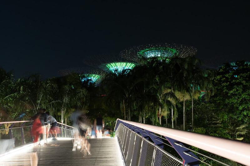Singapore-19-193.jpg