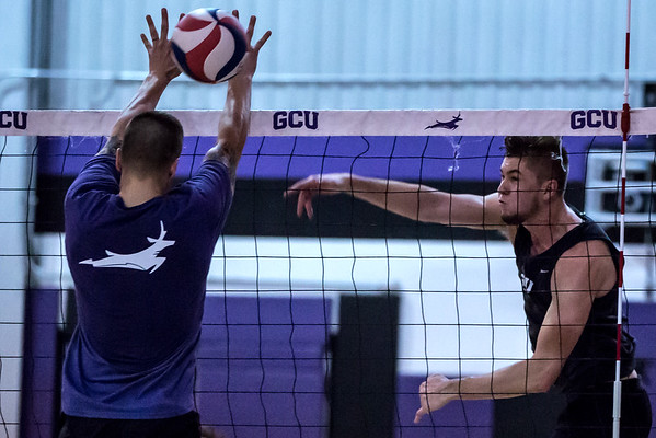 Volleyball GCU Men Alumni Game 20161231