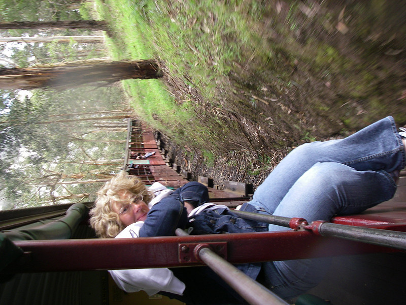 Puffing Billy and Phillip Island 047.JPG