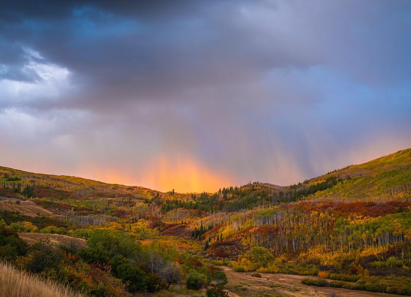 Kebler Pass! Colorado Fall Colors Fine Art Landscape Nature Photography Fuji GFX100  Elliot McGucken Fine Art Landscape Nature Photography Prints & Wall Art