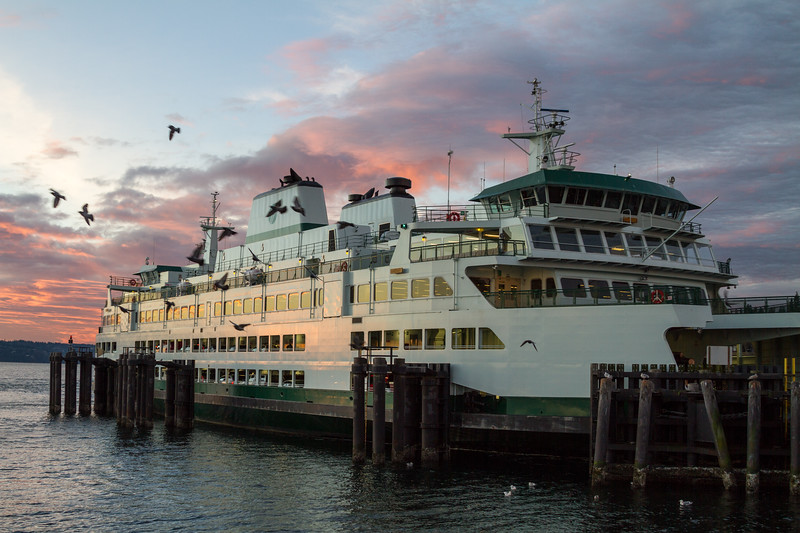 The M/V Tokitae sits at dock in Clinton, Whidbey Island, just before the sun comes up while seagulls circle