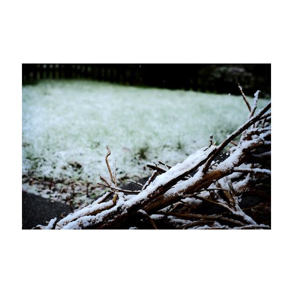 80_Snowday_10x10.jpg