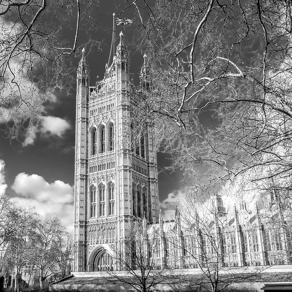 London Mar 2020-6.jpg