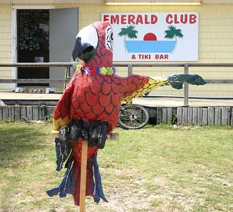 2009 EI Parrot Head's Poker Run
