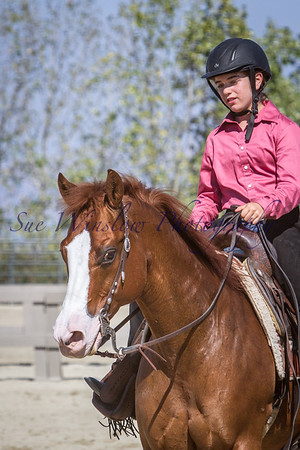 Western Equitation and Pleasure