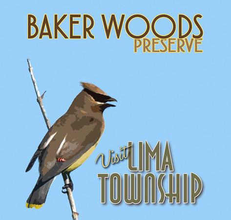 Baker Woods Preserve Poster