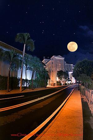 Strictly Palm Beach