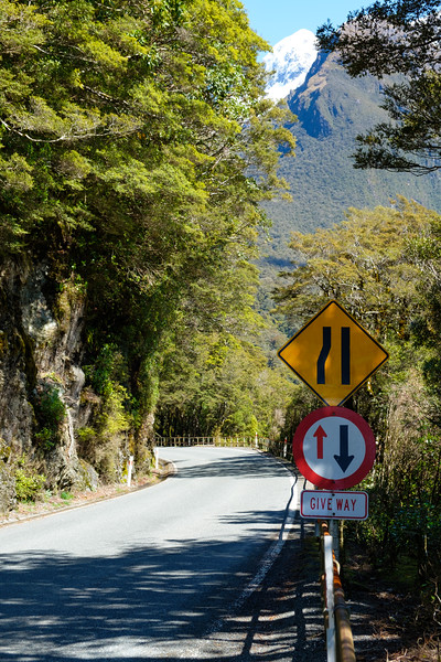 Road narrowing to one way across a bridge in Fjordland National Park, South Island, New Zealand