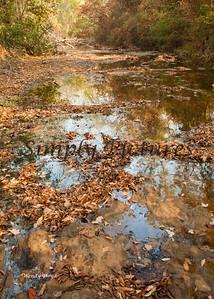 Banita Creek158