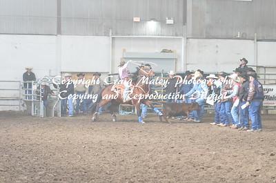 Calf Roping 04-25-15