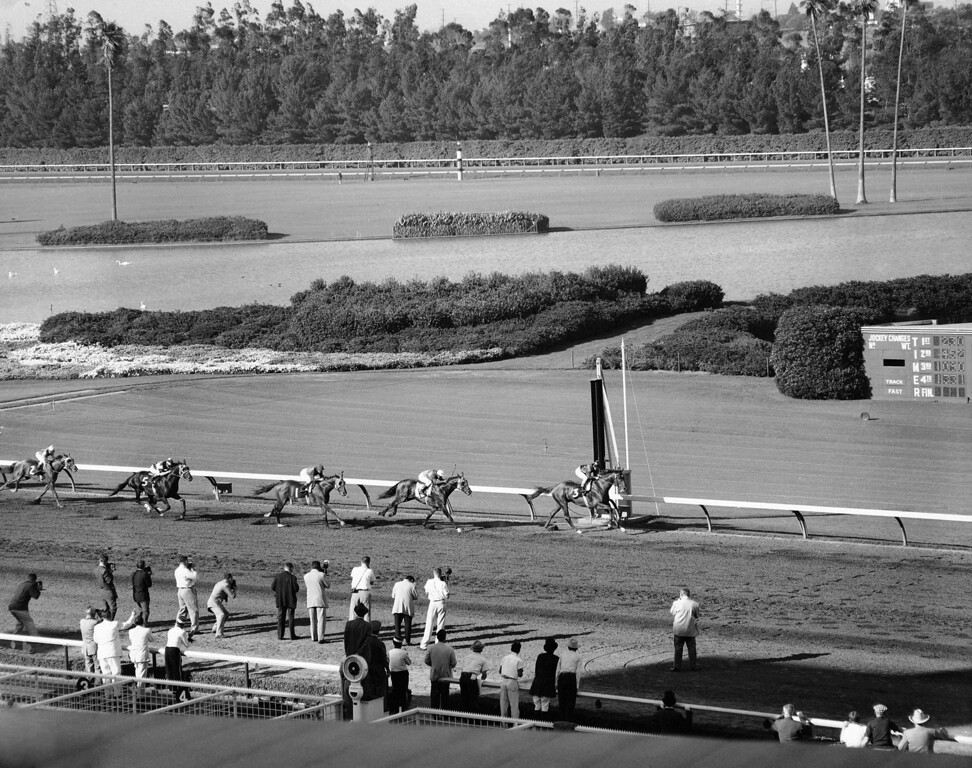 . Rex C. Ellsworth�s might Swaps coasts to victory in the $162,500 Hollywood Gold Cup at Hollywood Park in Inglewood, California on July 14, 1955, beating Mr. Gus to the wire, with Porterhouse third and Honeys Alibi fourth. Swaps paid $2.30, with win betting only permitted. (AP Photo)