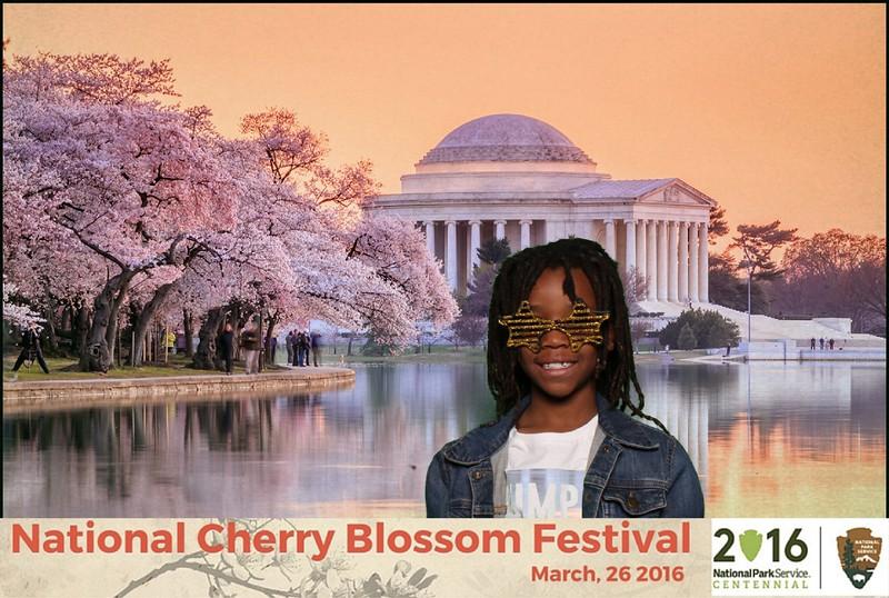 Boothie-NPS-CherryBlossom- (326).jpg