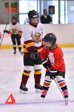 2017-08-19 Vancouver Female Come Try Hockey