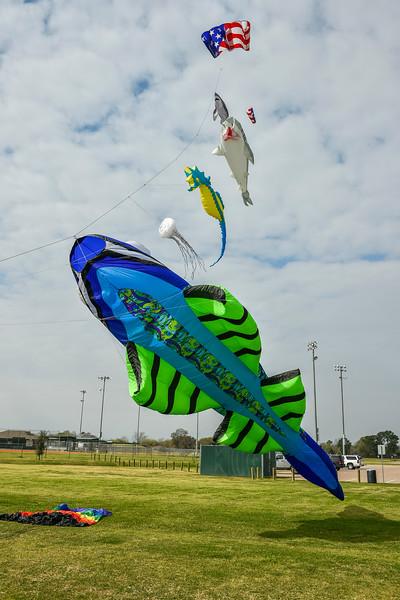 Kites and Fishing_2015_056.jpg
