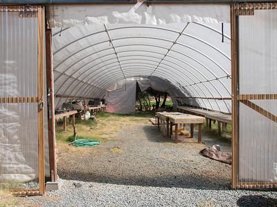 Four Frog Farm, July 25, 2012