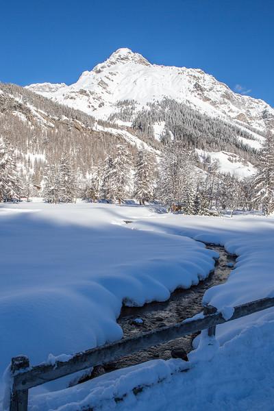 Rheinwald-Winter-D-Aebli-063.jpg