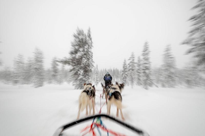Finland_160116_37.jpg