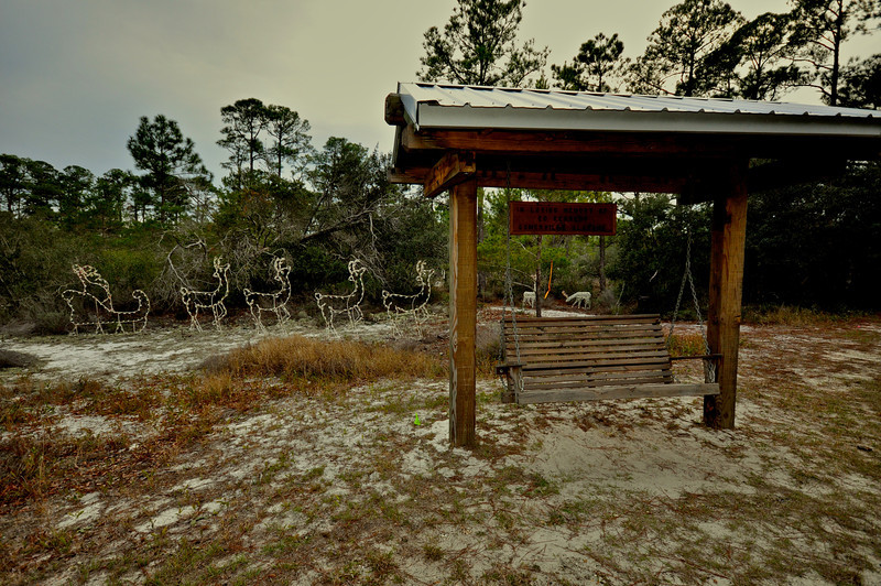 Orange Beach Sleigh Ride 2011  129.jpg