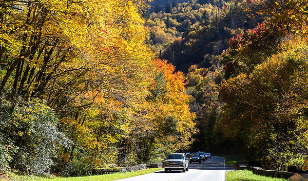 Smokey Mountain National Park, Tennessee