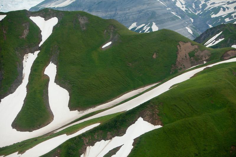 Alaska Icy Bay-4493.jpg