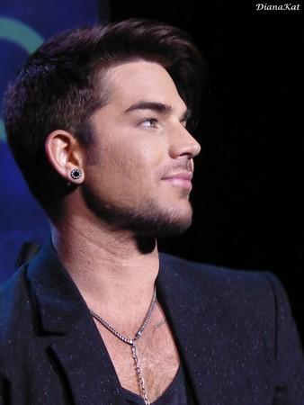 Adam Lambert Live In The Vineyard, Napa 11-6-15