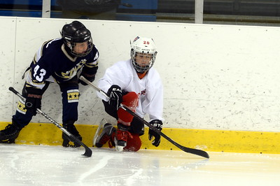 Mite AA Championship Game - Belle Tire