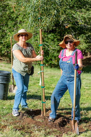 Oct 2019 Cool Parks Arbor Day Event