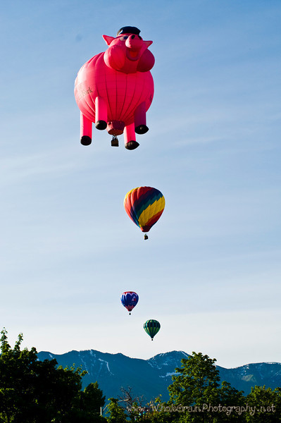 20090612_Balloons_1917.jpg