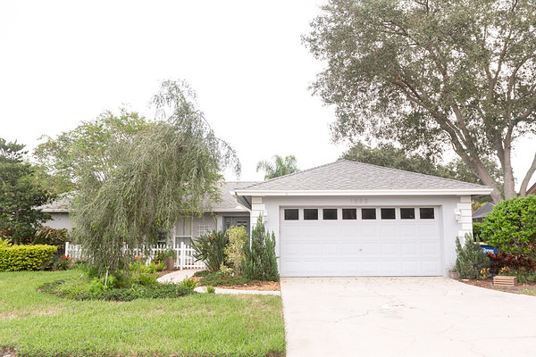 1883 Forest Wood Drive, Safety Harbor, FL 33759 | Full Resolution