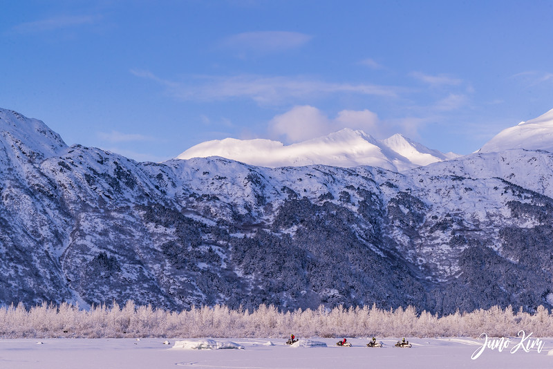 2020-01-17_Alaska Wild Guides-6102798-Juno Kim.jpg