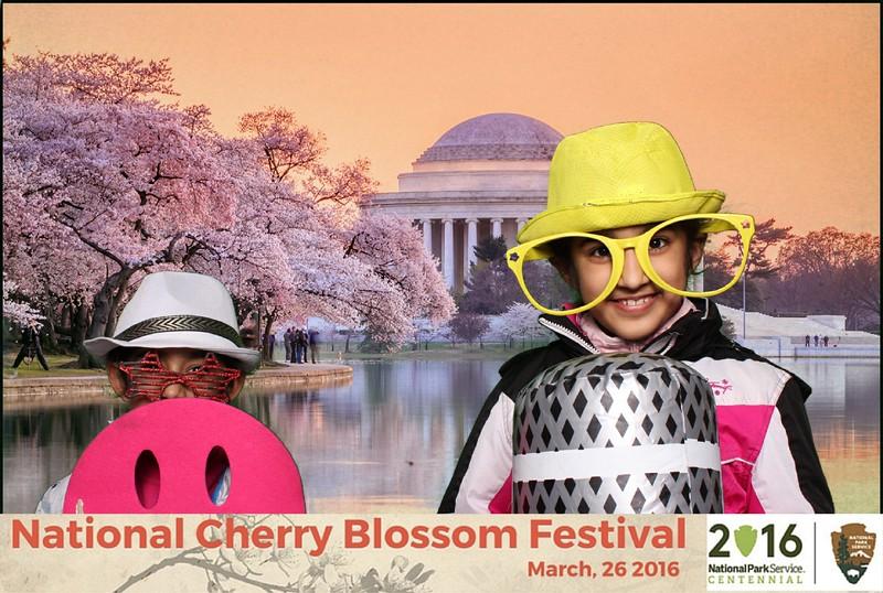 Boothie-NPS-CherryBlossom- (404).jpg