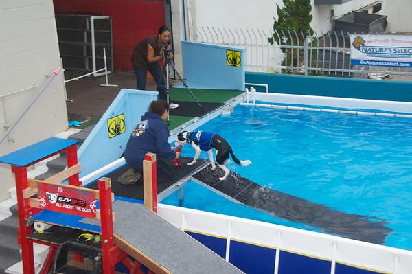 Pool 16 Oct 2010