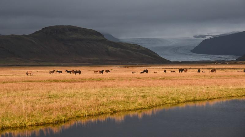 Iceland_2015_10_08_10_44_40.jpg