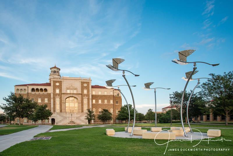 Texas_Tech-14343.JPG
