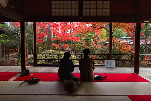 Myoshin-ji Complex