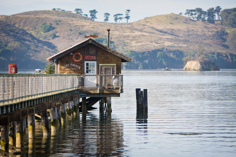 A quiet, clear morning on Tomales Bay.