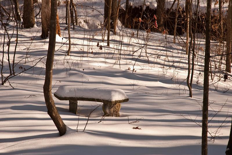 Winter's White