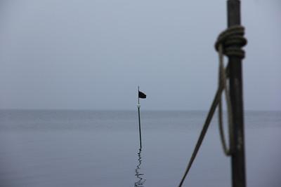 20111106 Dive, Lønsømade