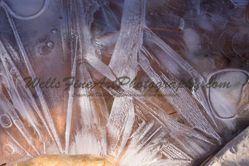 IMG_8282 Icy rays.jpg