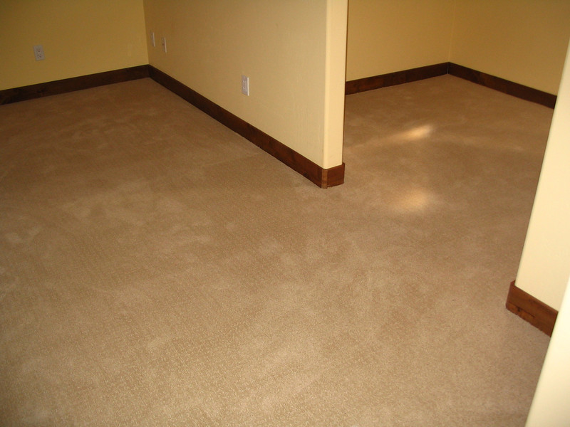 Master bedroom and closet, carpeted.