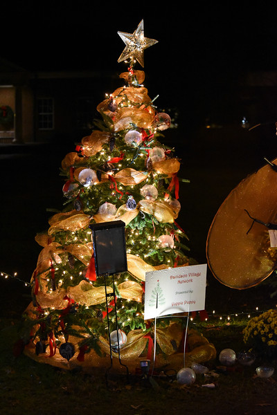 This tree was sponsored by Yuppie Puppy, and the proceeds will go to the Davidson Village Network. The tree was part of the Rotary Club of Davidson's Giving Village. This wonderful fundraiser for local nonprofit organizations in a favorite attraction for young and old visitors alike.